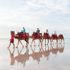 cable beach camel photography