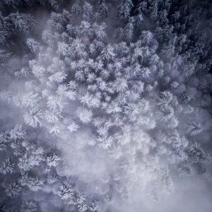 Polar Blast Heidelberg