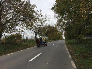 horse and cart romania eurovelo 6