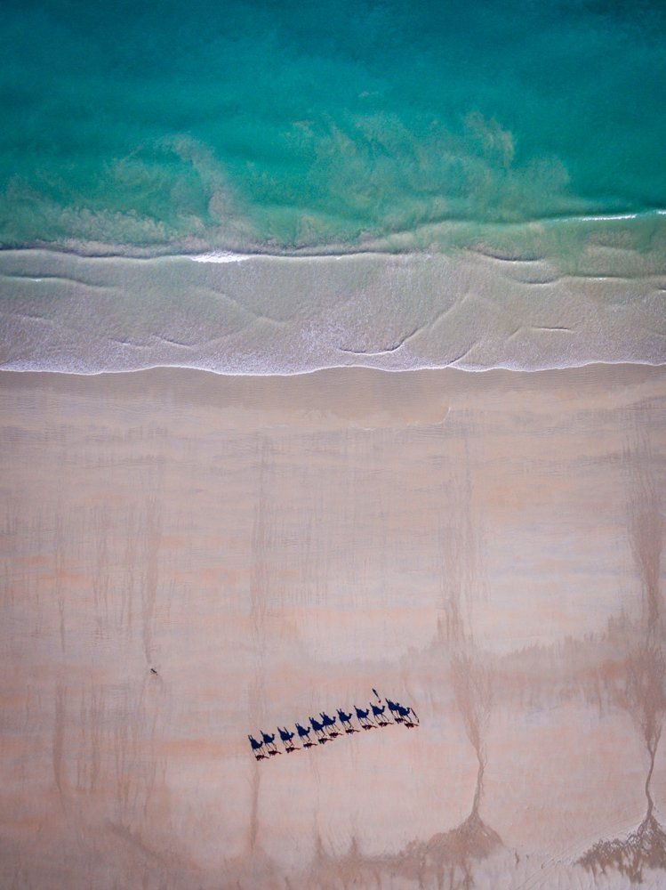 cable beach camels from above