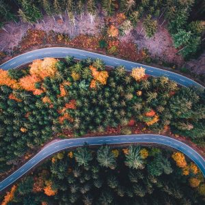 autumn road heidelberg drone photography