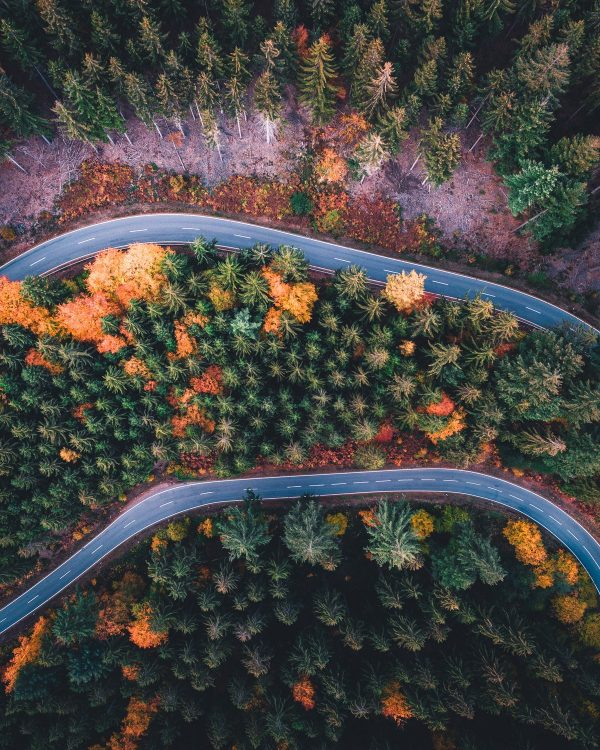 autumn road heidelberg drone photography
