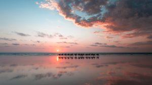 paul michael photography broome australia