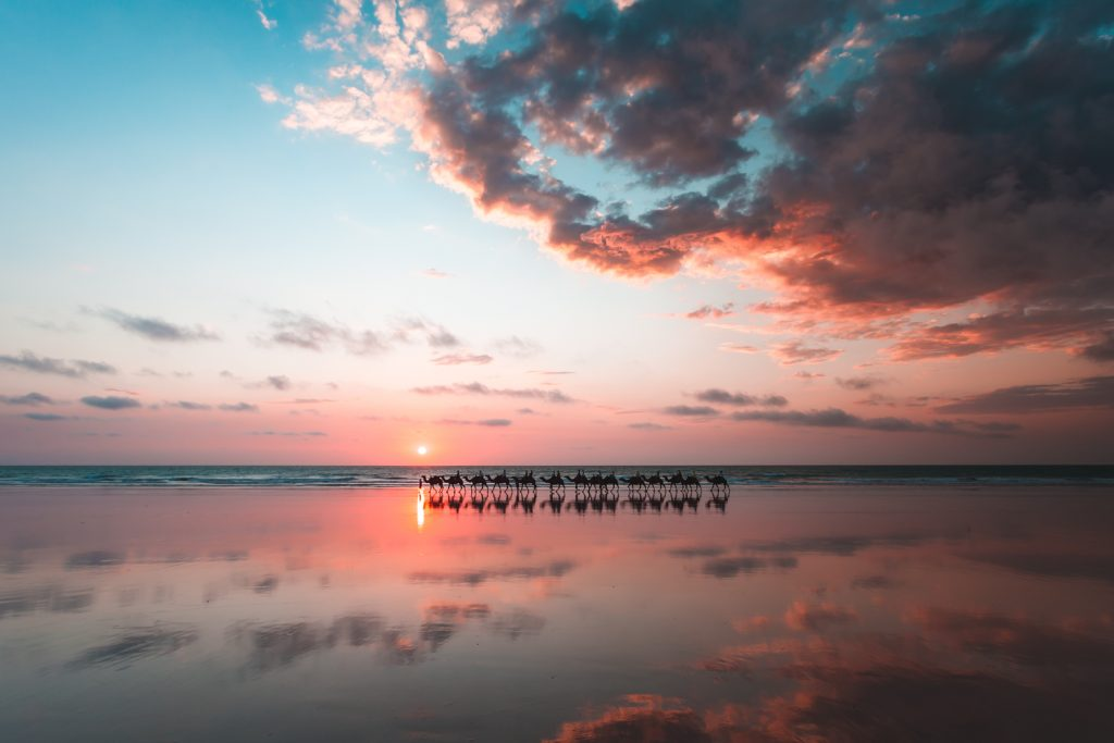 CABLE BEACH CAMEL SUNSET broome