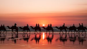 broome & the kimberley