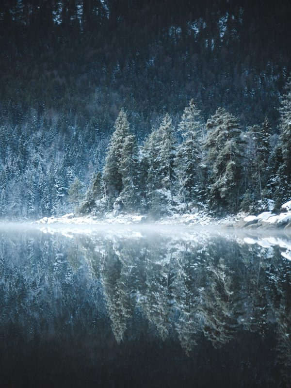 Eibsee Reflection
